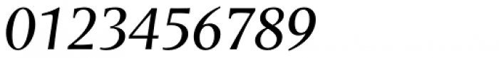 Areplos Book Pro Italic Font OTHER CHARS