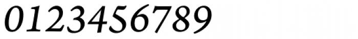 Arno Pro Caption Italic Font OTHER CHARS
