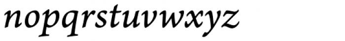 Arno Pro Caption Italic Font LOWERCASE
