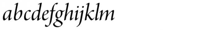 Arno Pro Display Italic Font LOWERCASE