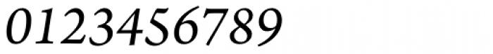 Arno Pro SmallText Italic Font OTHER CHARS
