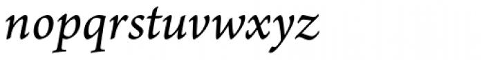 Arno Pro SmallText Italic Font LOWERCASE