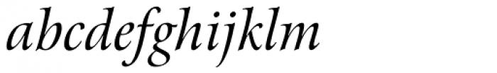Arrus BT Italic Font LOWERCASE