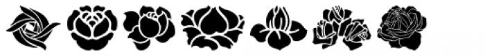Art Nouveau Flowers Font OTHER CHARS