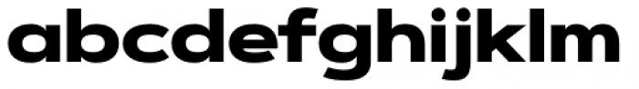 Artegra Sans Extended Alt Black Font LOWERCASE