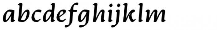 Artifex CF Bold Italic Font LOWERCASE