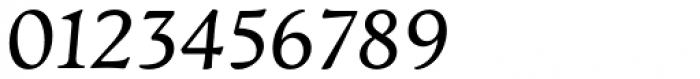 Artifex CF Regular Italic Font OTHER CHARS