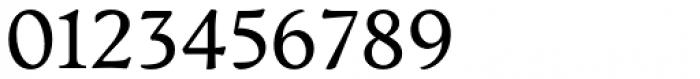 Artifex CF Regular Font OTHER CHARS