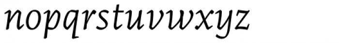 Artigo Pro Light Italic Font LOWERCASE