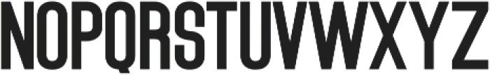 Ashcroft Sans Serif otf (400) Font LOWERCASE