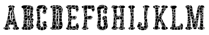 Astakhov Dished Skin E-F-2Serif Font LOWERCASE