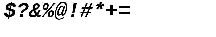 Ascender Sans Mono WGL Bold Italic Font OTHER CHARS