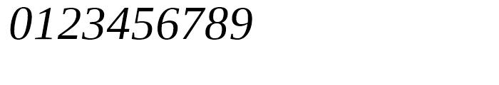 Ascender Serif WGL Italic Font OTHER CHARS