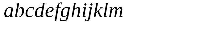 Ascender Serif WGL Italic Font LOWERCASE