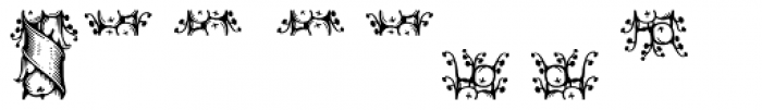 ASTYPE Ornaments Thanksgiving Font LOWERCASE