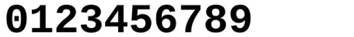 Ascender Sans Mono Bold Font OTHER CHARS