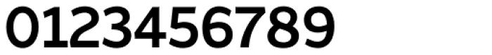 Asterisk Sans Pro Bold Font OTHER CHARS