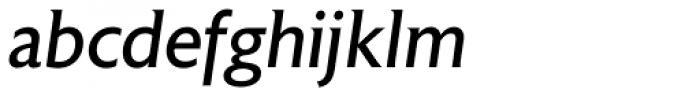 Astoria Italic Font LOWERCASE