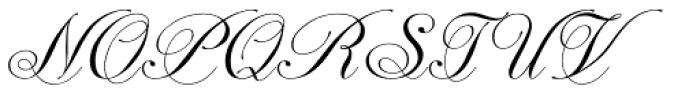 Astrum Cyrillic Light Font UPPERCASE