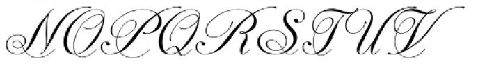 Astrum Cyrillic Small Light Font UPPERCASE