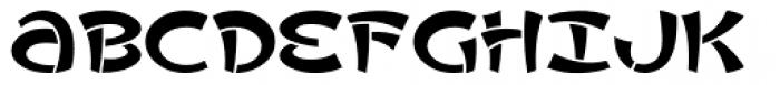 Asvet Mono Font UPPERCASE