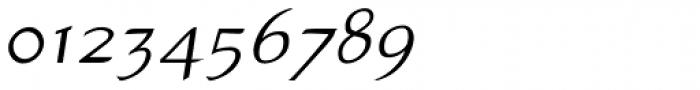Atlantic Sans OSF Italic Font OTHER CHARS
