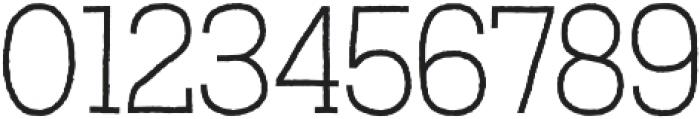 Austral Slab otf (100) Font OTHER CHARS