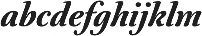 Australis Pro Bold Italic otf (700) Font LOWERCASE
