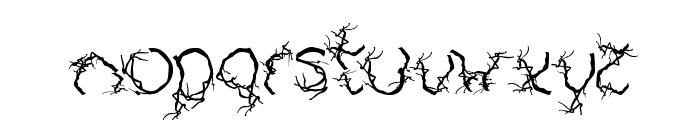 AUTUMN Font LOWERCASE