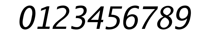 AurulentSans-Italic Font OTHER CHARS