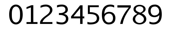 AurulentSansMono-Regular Font OTHER CHARS