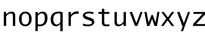 AurulentSansMono-Regular Font LOWERCASE