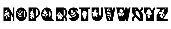 Autumn Deco Font UPPERCASE