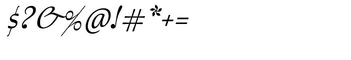 Australis Pro Italic Font OTHER CHARS