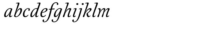 Australis Pro Italic Font LOWERCASE