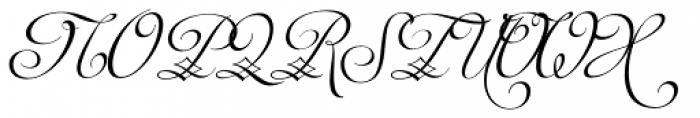 Auberge Script Basic Five Font UPPERCASE