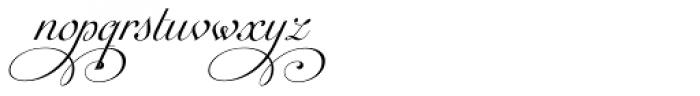 Auberge Script Basic Five Font LOWERCASE