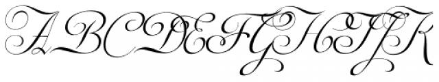 Auberge Script Basic Three Font UPPERCASE
