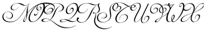 Auberge Script Pro Font UPPERCASE