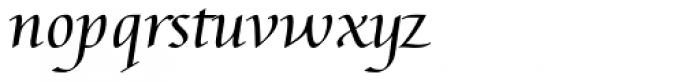 Augusta Cancellaresca Font LOWERCASE