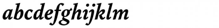 Augustin Bold Italic Font LOWERCASE