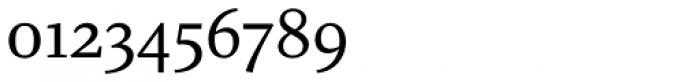 Augustin Regular Font OTHER CHARS