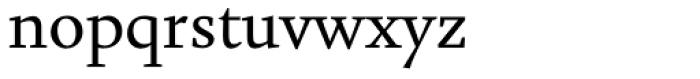 Augustin Regular Font LOWERCASE