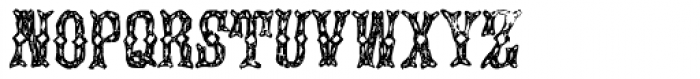 Augustine Font UPPERCASE