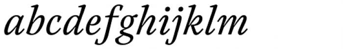 Austera Text Italic Font LOWERCASE