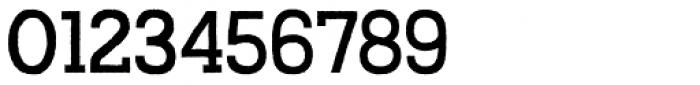 Austral Slab Rough Regular Font OTHER CHARS