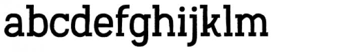 Austral Slab Rough Regular Font LOWERCASE