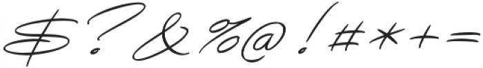Avelana Thin Italic otf (100) Font OTHER CHARS