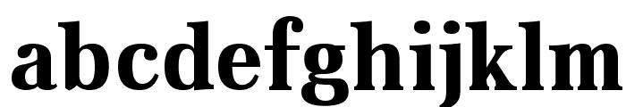Aver Bold Font LOWERCASE