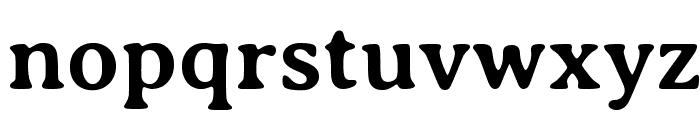 Averia Serif Libre Bold Font LOWERCASE